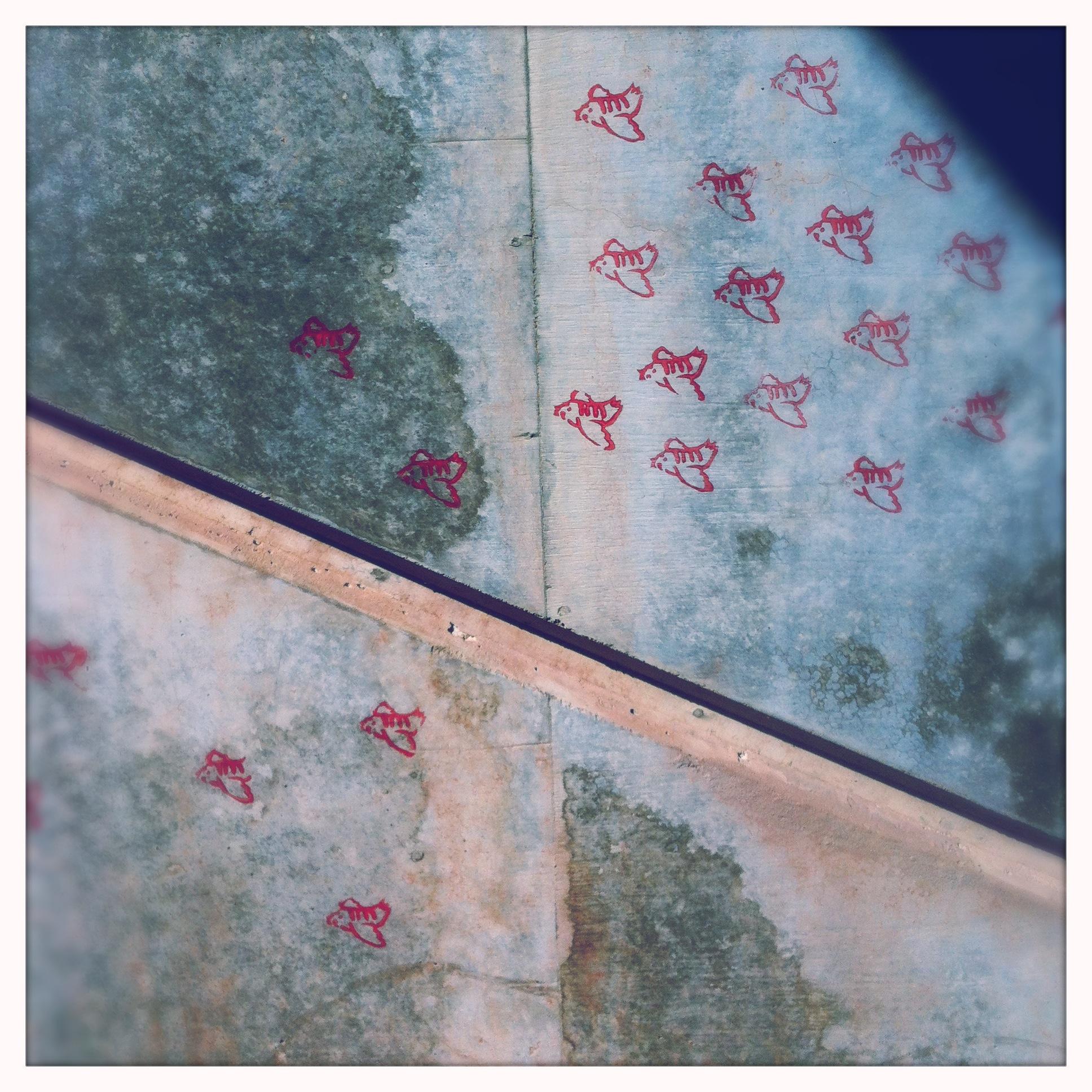 04.2 – les oiseaux de monsieur – 20 mars 2012